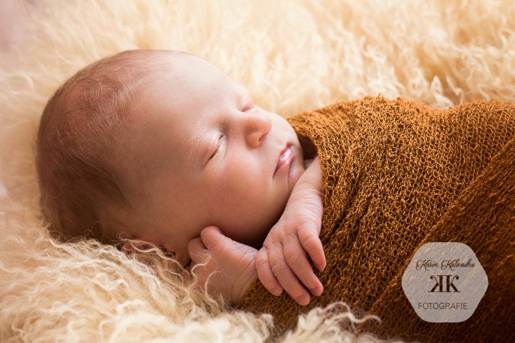 Baby-Fotoshooting #5