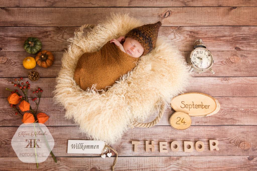 Baby-Fotoshooting #1