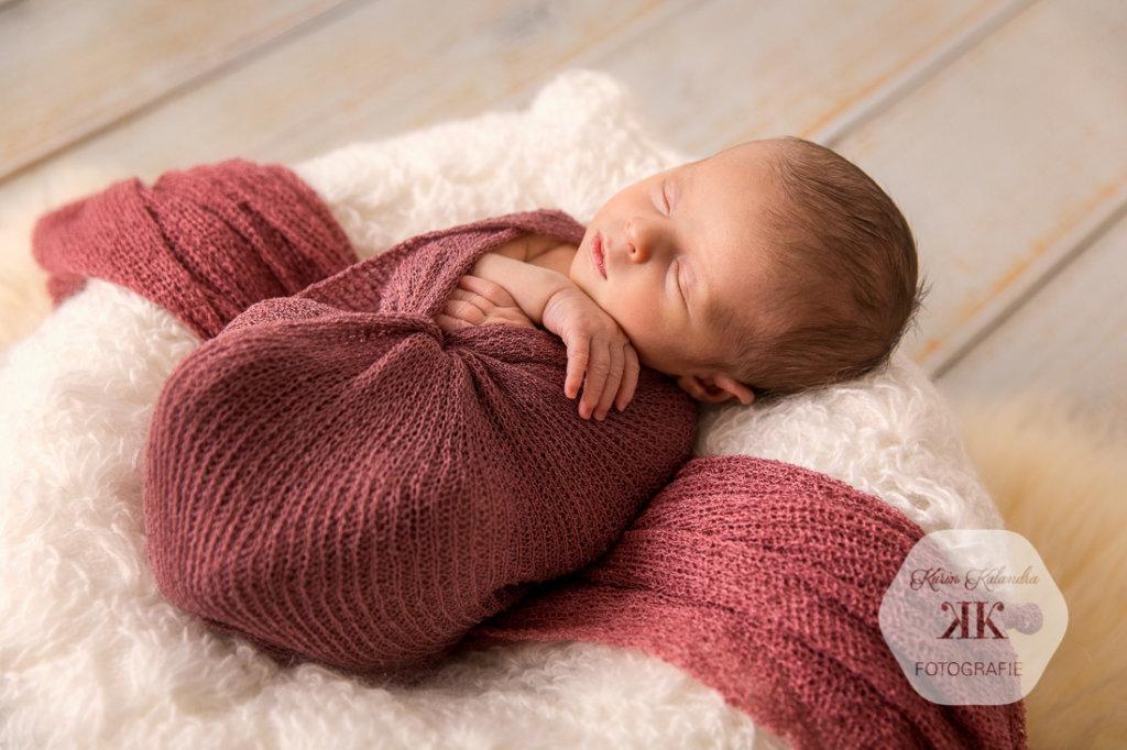 Liebevolle Babyfotografie Wien #2