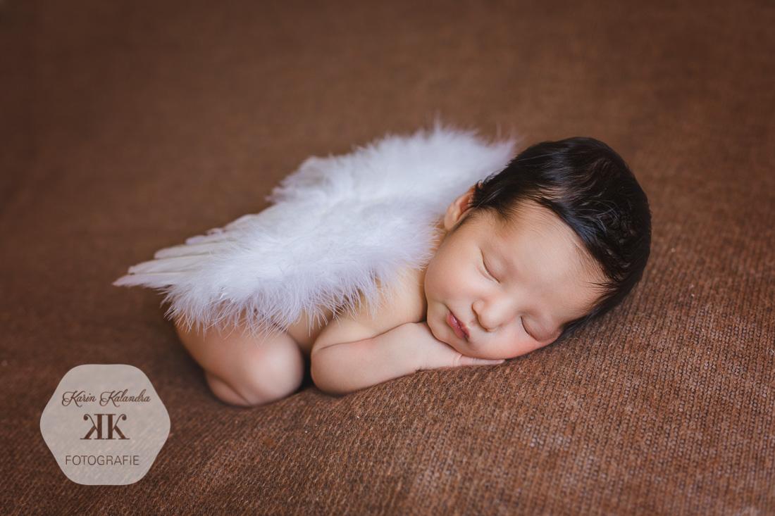 Neugeborenenfotoshooting Wien #9
