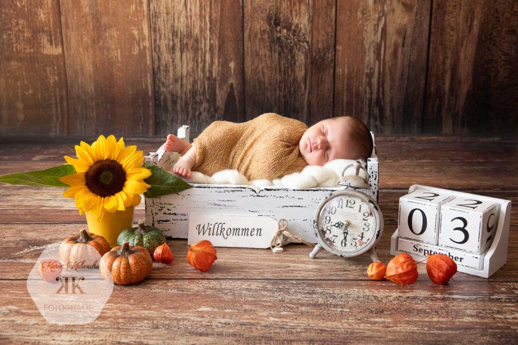 Neugeborenenshooting #9