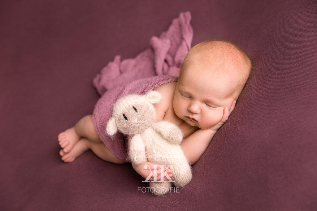 Neugeborenenbilder #3