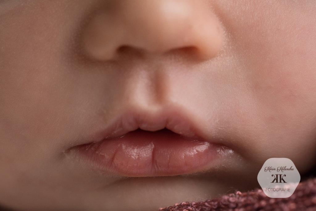 Neugeborenenbilder #11
